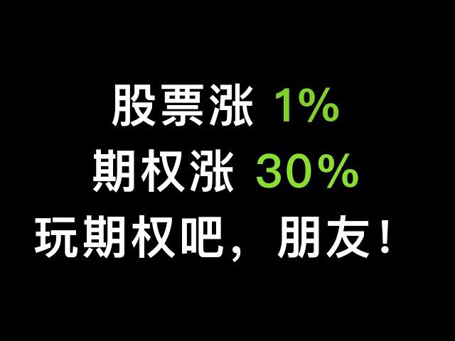 股票涨1%,期权能赚30%,美股和比特币期权的魅力,快来感受下(第265期)
